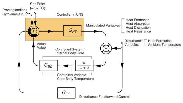 Ο μηχανισμός της θερμορύθμισης με τη μορφή συστήματος