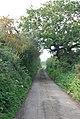 Throop Road (westwards) - geograph.org.uk - 577958.jpg
