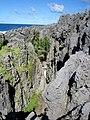 Togo Chasm, Niue.jpg
