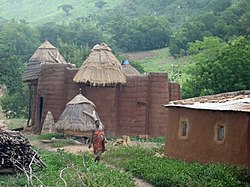 A Tammari house with granaries, in Northern Togo.