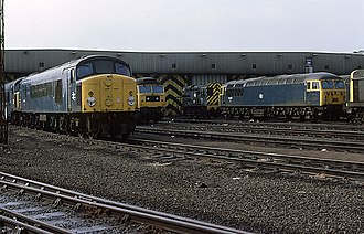 Toton TMD - Diesel locomotives on shed, during the BR era.