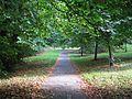 Town Park, Tralee - panoramio.jpg