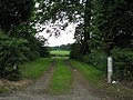 Track in to the woods near Bowhouse Farm - geograph.org.uk - 1366575.jpg