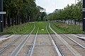 Tramway de Reims - IMG 2417.jpg