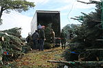Trees for Troops spreads Christmas cheer at Cherry Point 141211-M-SR938-065.jpg