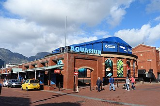 Victoria & Alfred Waterfront - Image: Two Oceans Aquarium CT jeh