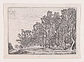 Two Plank Hedges, from Verscheyden Landtschapjes (Various Landscapes), Plate 6 MET DP871792.jpg