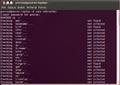 Ubuntu 10.04 rootkit1.png