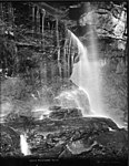 Under Katoomba Falls (2430714464).jpg