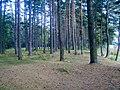 Upmale - panoramio.jpg