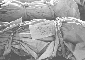 Massacre at Huế - Label on the shrouded remains of a Tet Offensive victim describing teeth, color of hair, footwear, and other possessions found with the body.