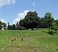 Vicksburg National Cemetery (4851187962).jpg