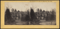 View in Greenwood Cemetery, by S. Beer.png
