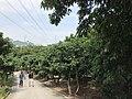 View near Xili Lake Station 4.jpg
