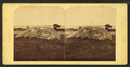View of a rock, from Robert N. Dennis collection of stereoscopic views.png