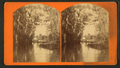 View of the Oklawaha River, Florida, from Robert N. Dennis collection of stereoscopic views 2.png