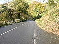 View west along A458(T) - geograph.org.uk - 600953.jpg