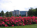 Visionplaze West KLM geb 878 - panoramio.jpg