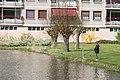 Vissen in de singel in Spijkenisse.jpg