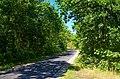 Vlieland - Kampweg - View NNW.jpg