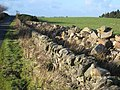 Wall at Hairy Side - geograph.org.uk - 282271.jpg
