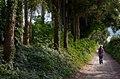 Wandelend op de Smidsberg - panoramio.jpg