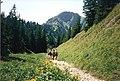 Wanderweg an der Nagelfluhkette - geo.hlipp.de - 1377.jpg