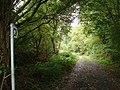 Waymarked track near Caeceinach - geograph.org.uk - 268588.jpg