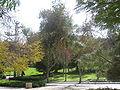 Weizmann Institute IMG 2295.JPG