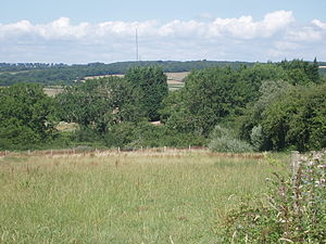 Wenvoe transmitting station - The mast seen in the distance from Barry