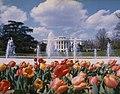 White House Spring 1975 E.jpg