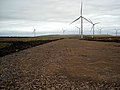 Whitelee Windfarm - geograph.org.uk - 1533990.jpg