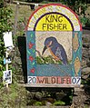 Wildlife Well dressing 2007 - geograph.org.uk - 503929.jpg