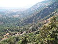 Winding road thro the train - panoramio.jpg