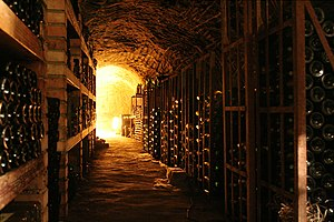 Wine cellar in Chvalovice near Znojmo.