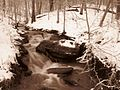 Winter-Waterfall-Sepia - West Virginia - ForestWander.jpg
