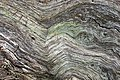 Wood Grain - geograph.org.uk - 1179140.jpg