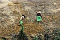 Working for Shifting Cultivation.jpg