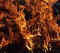 Wraxall 2013 MMB 75 Bonfire.jpg