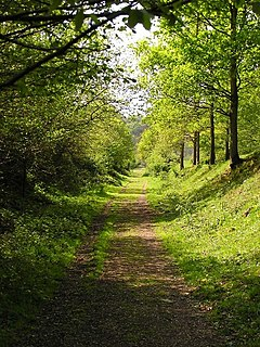 Wye Valley Walk