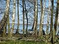 Wysoka jezioro - panoramio.jpg