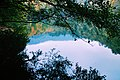 Yedigöller Milli Parkı 5.jpg