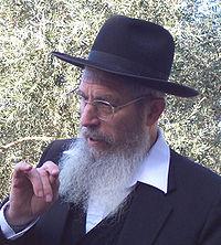 Yisrael Ariel.jpg
