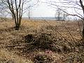Zastavne Ivanychivskyi Volynska-mill destroyed-2.jpg