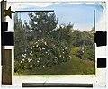 """Beacon Hill House,"" Arthur Curtiss James house, Beacon Hill Road, Newport, Rhode Island. Rose garden LCCN2008679203.jpg"