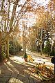 ® S.D. MADRID CAMPO DEL MORO - CUERPO DE GUARDIA - panoramio (14).jpg