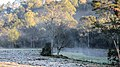 Área rural no inverno.jpg