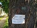 Čertousy, chráněné stromořadí, cedulky.jpg