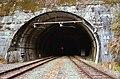 Ōzore tunnel-01.jpg