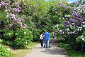 Ботанічний сад ім. М.Гришка IMG 0351.jpg